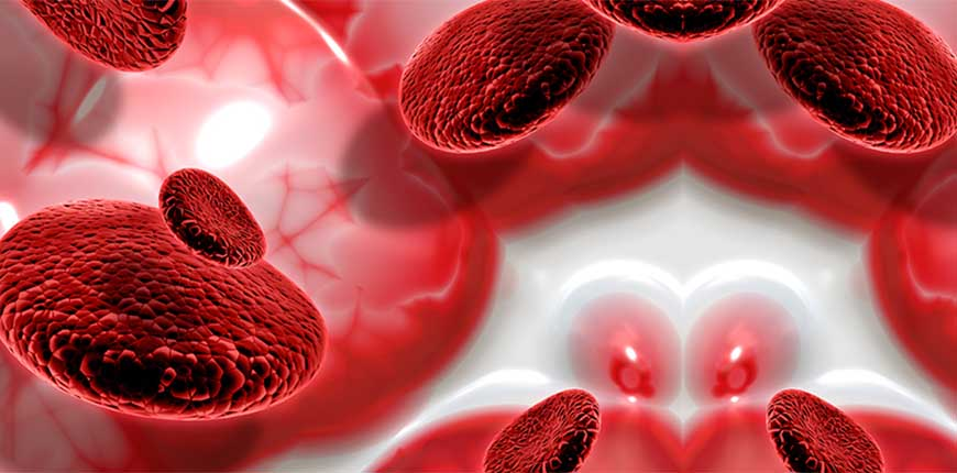 Blood Cancer Treatment in India, Cost and More