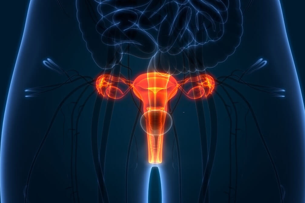 best Cervical Cancer Treatment in india